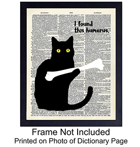 103695497dce8 Funny Cat Unframed Dictionary Wall Art Print - Perfect Affordable Gift -  Chic Vintage Home Decor - Great for Living Room, Home Office - Ready to  Frame ...