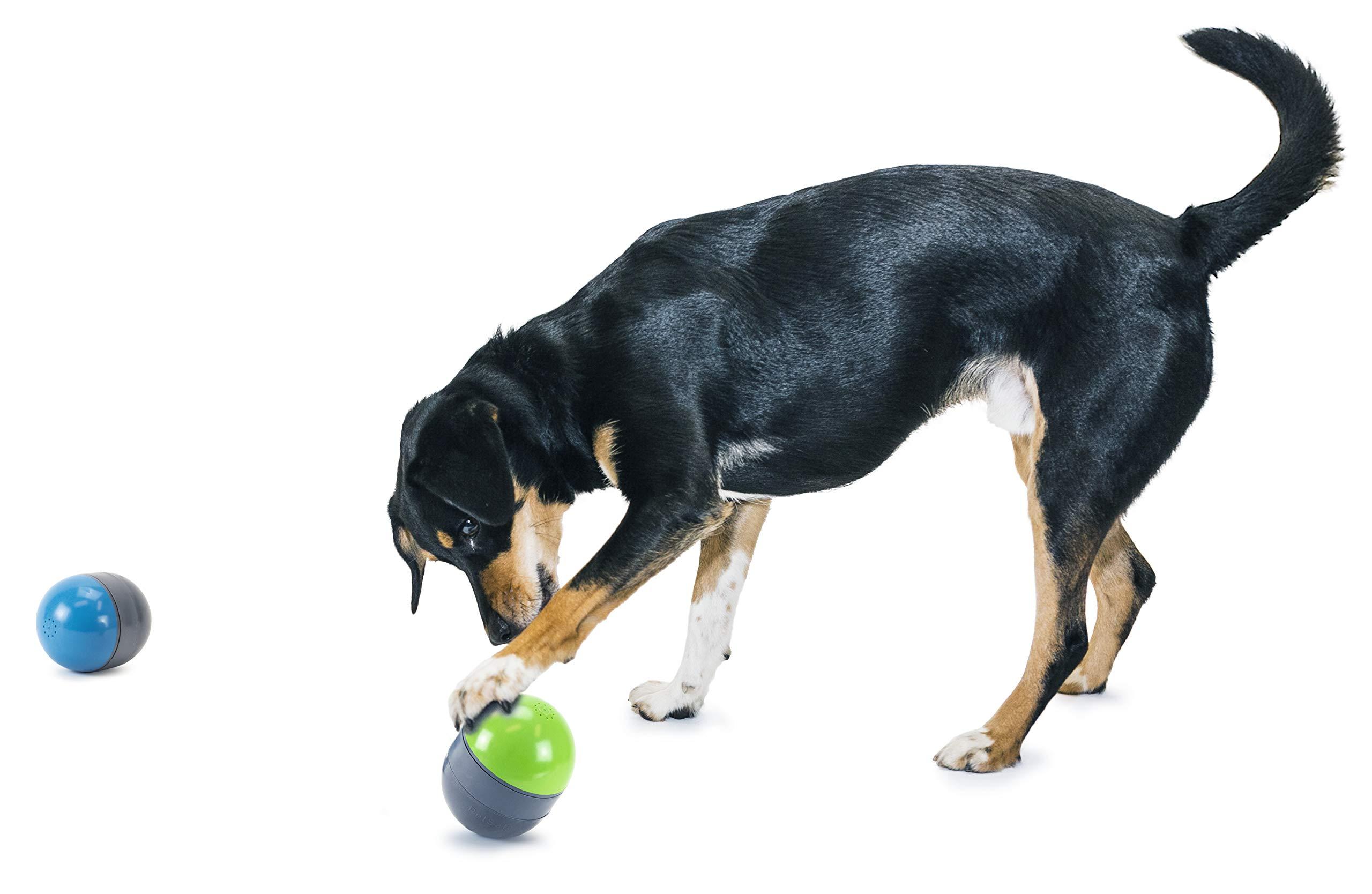 PetSafe Ricochet Electronic Dog Toys, Interactive Sound Game for Pets by PetSafe