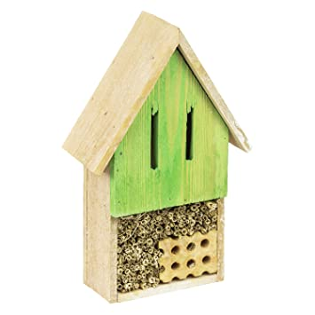 Insectos hotel madera natural verde Insectos Casa nistkästen Caja Nido Abejas: Amazon.es: Productos para mascotas