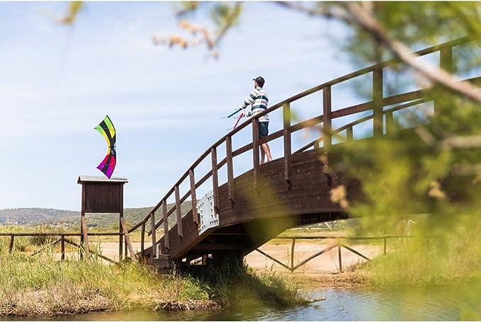 HQ Cerfs-Volants 11939230/Mojo Rainbow Kite