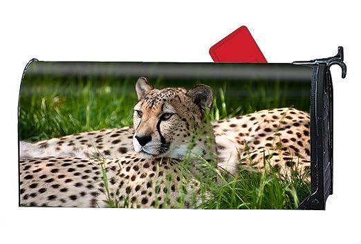 XW-FGF Animal Cheetah Cats - Funda magnética para buzón estándar ...