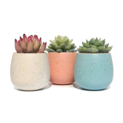 Ceramic Decorative Small Pots