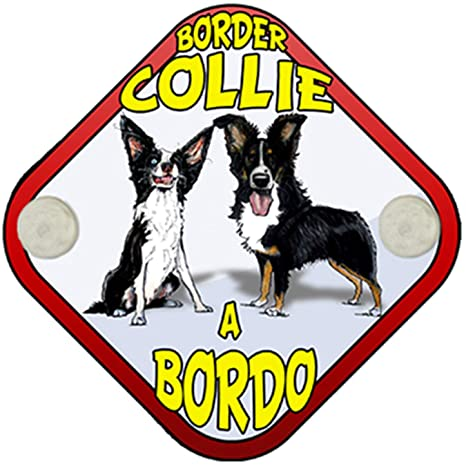 Placa bebé a bordo Border Collie a bordo perro a bordo ...