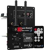 Dayton Audio WF60PA 60W Class D Full-Range 2 Channel Plate Amplifier