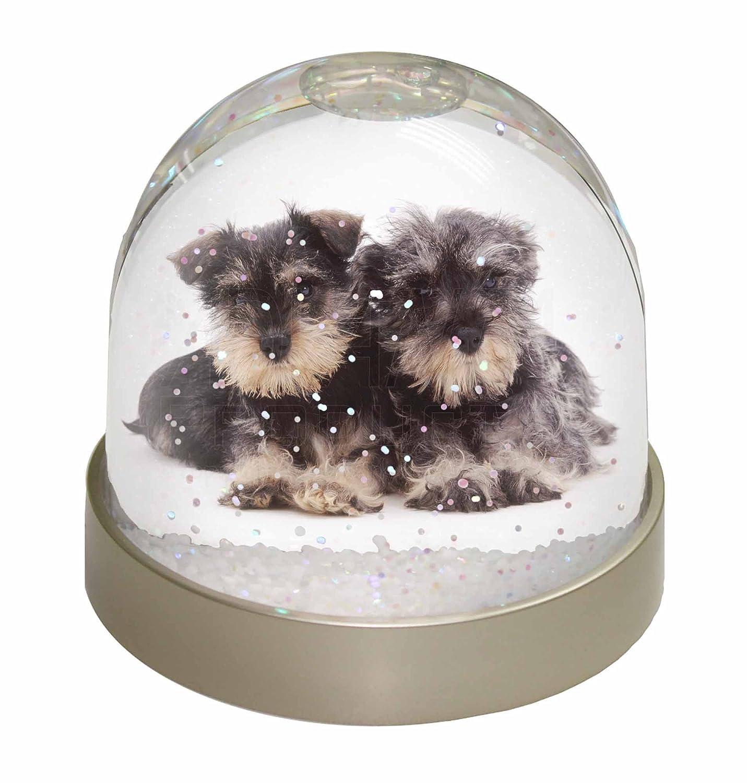 Advanta Miniature Schnauzer Dogs Snow Globe, Multi-Colour, 9.2 x 9.2 x 8 cm Advanta Products AD-S75GL