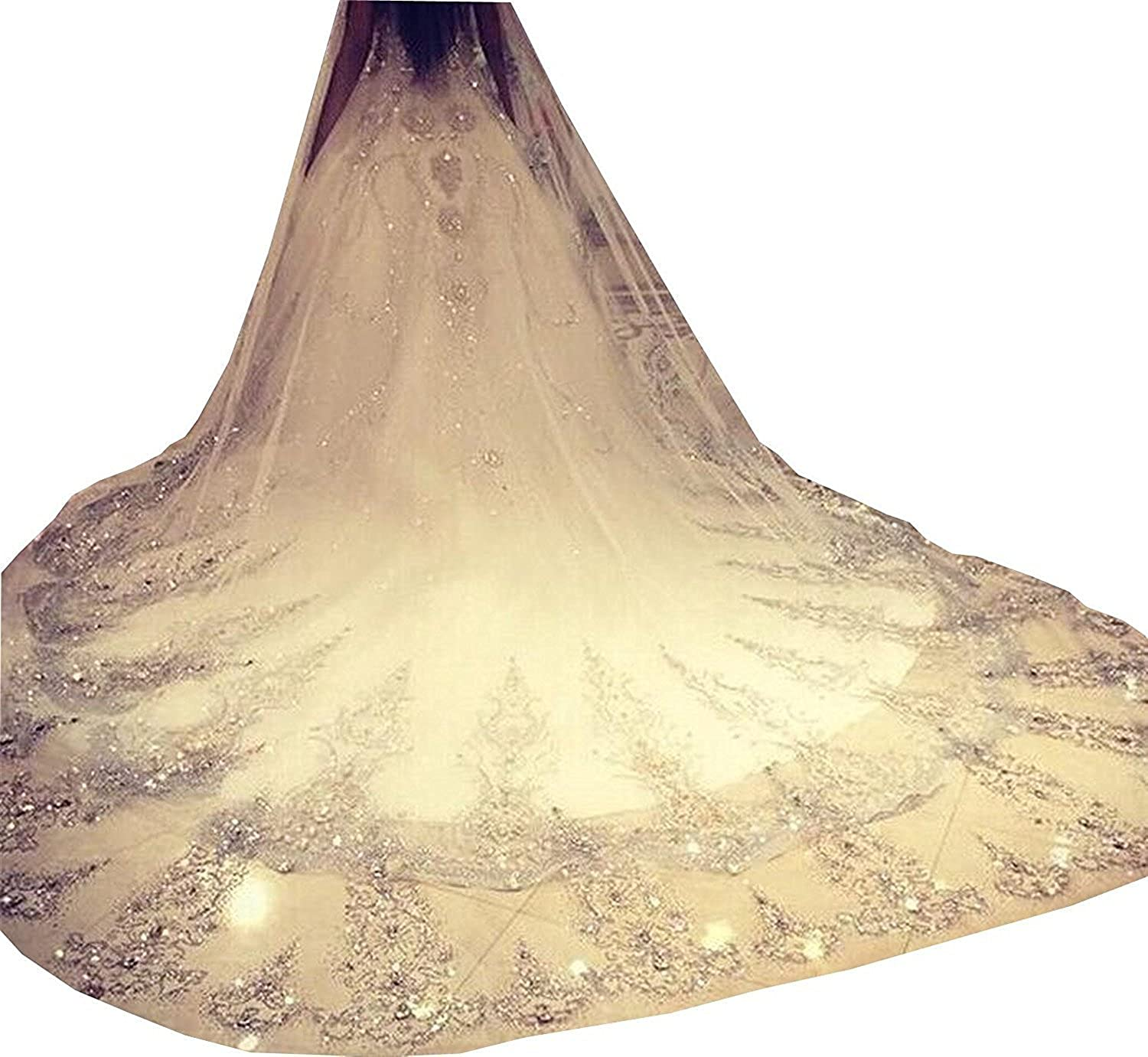 1T 1 Tier Beaded Lace Edge Bridal Wedding Veil with Crystals 3M