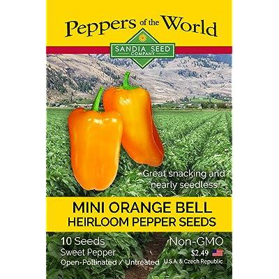 Orange Bell Pepper Snack Size - 10 Seeds - Easy to Grow - NonGMO : Garden & Outdoor