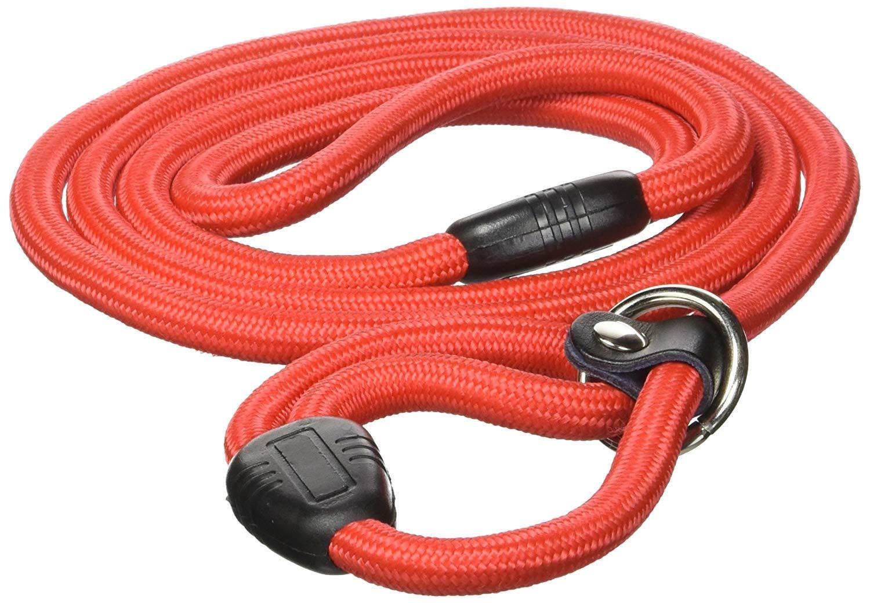 Nylon Pet Dog Round Traction Slip Rope Neck Leash 0.4 Inch Diameter Red w Collar