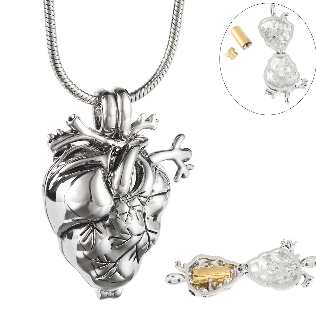 Eternally Loved Anatomical Heart Necklace Cremation Organ Pendant