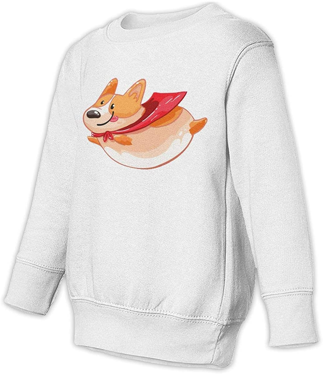 wudici Flying Squirrel Boys Girls Pullover Sweaters Crewneck Sweatshirts Clothes for 2-6 Years Old Children