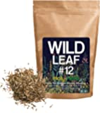 Dried Hyssop Herb, Holy Herb by Wild Foods For Tea, Cooking, Seasoning, Recipes, Infusions, Cosmetics, 100% Natural