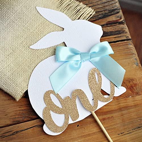 be3c03b069c Amazon.com  Peter Rabbit Cake Topper for 1st Birthday. Spring Boy ...