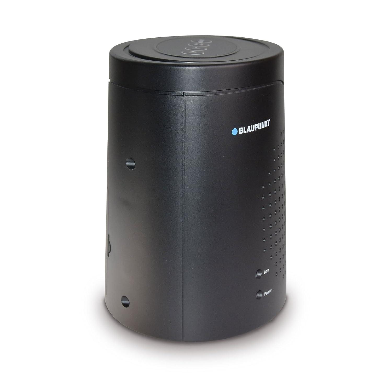 Blaupunkt Security - Detectores de Peligro autónomos (humo, calor, agua, presencia) (ISD-RG1200): Amazon.es: Bricolaje y herramientas