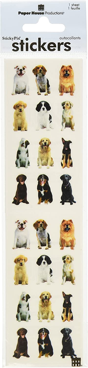Paper House Productions ST-2048E Photo Real Stickypix Stickers 2-Inch by 4-Inch 6-Pack Mini Mixed Dogs