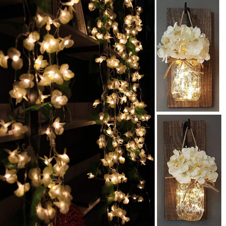 Luci tenda con elegante stoffa Begonia Fiori, Yoyoukit 7.3 ft 8 modalità fata stringa di Natale tende di luce per matrimonio decorazione della camera da letto muro YoyoKit