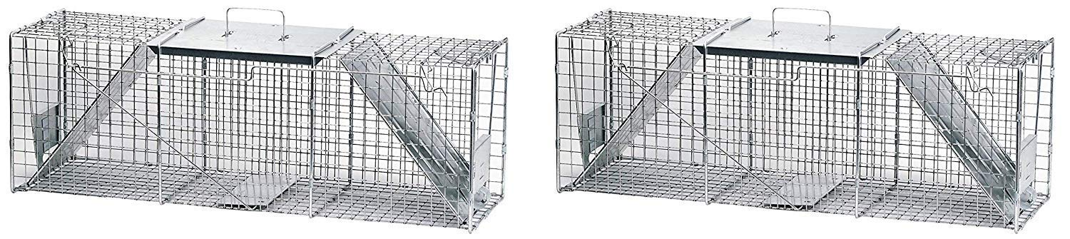 Havahart 1045 Live Animal Two-Door Raccoon, Stray Cat, Opossum, and Groundhog Cage Trap (Pack of 2) by Havahart