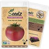 CERTIFIED ORGANIC SEEDS (Apr. 100) - Cherokee Purple Beefsteak Tomato - Heirloom Tomato Seeds - Non GMO, Non Hybrid Vegetable Seeds - USA