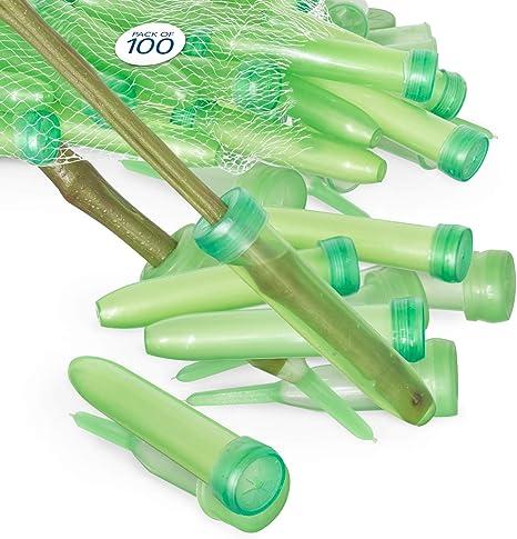 Orgrimmar Pack of 100 Flower Water Tubes,Clear Plastic Floral Tubes for Flower Arrangements