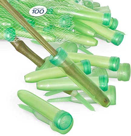 100pcs Clear Plastic Flower Water Tubes Floral Aqua-tubes Craft Wrapping Supply