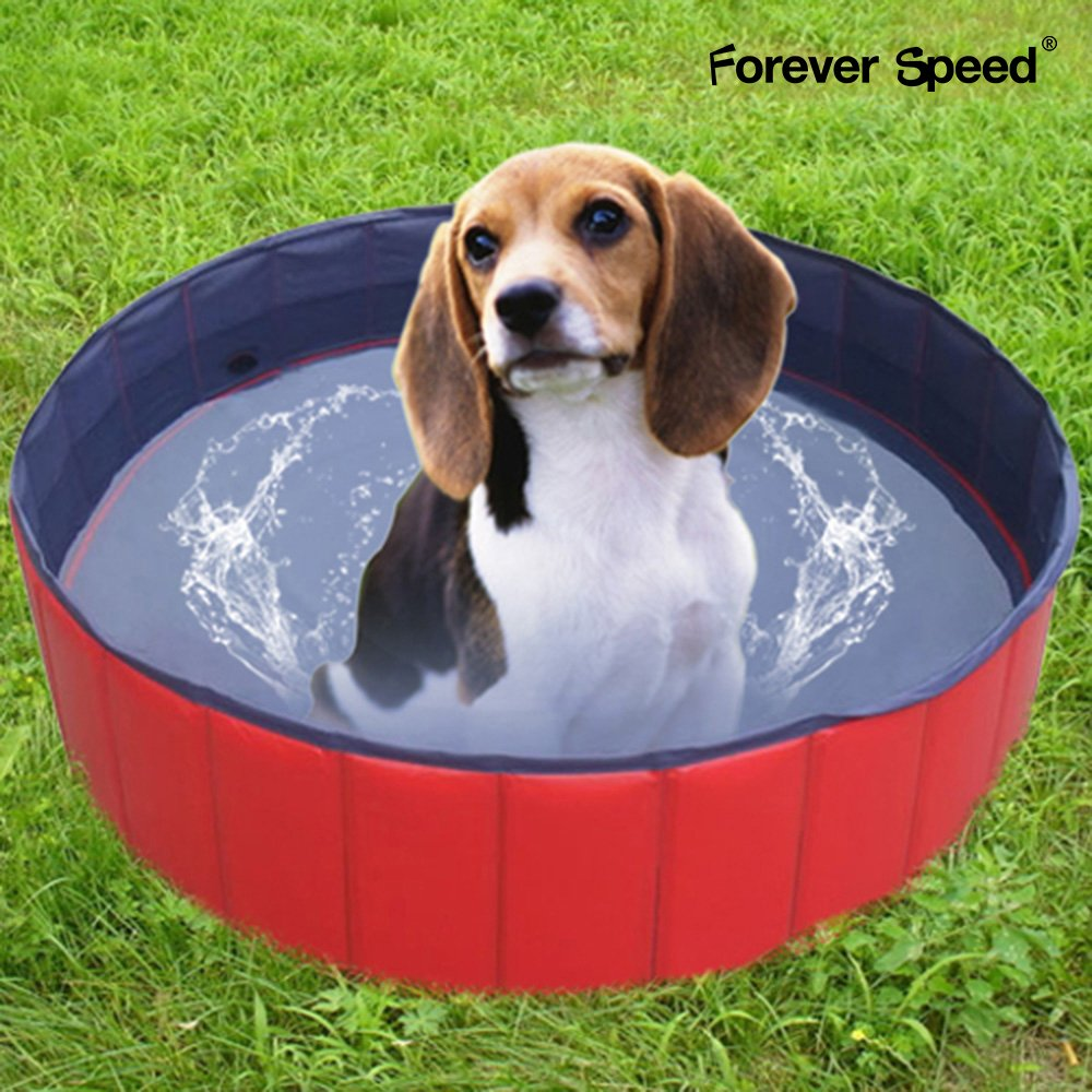 Forever Speed Hundepool Doggy Pool Swimming Pool 160x30cm Rot