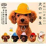 いぬのかぶりもの第3弾 かわいいかわいい 犬の一年生 [全5種セット(フルコンプ)]