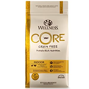 Wellness Core Natural Grain Free Dry Cat Food, Indoor Chicken & Turkey Recipe, 2-Pound Bag