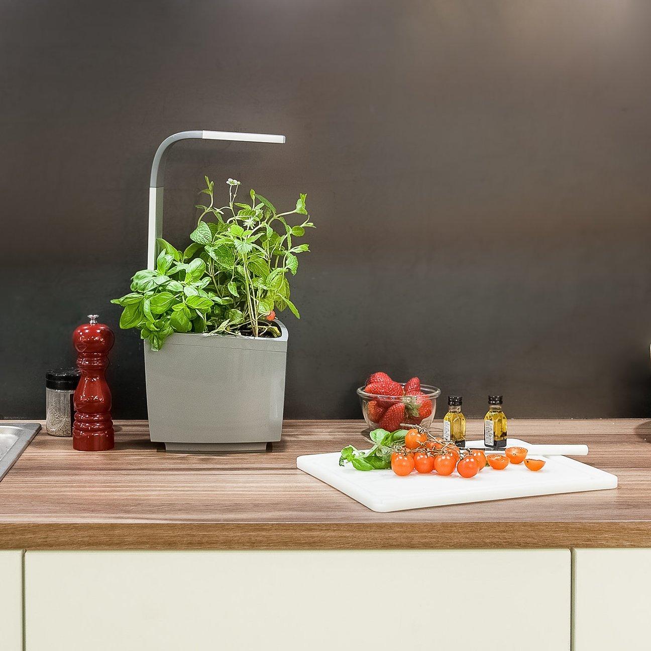 tregren t3 potager d 39 int rieur connect 3 plantes kit. Black Bedroom Furniture Sets. Home Design Ideas