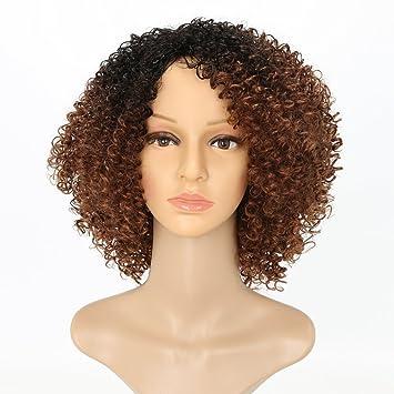 Afro Kinky Peluca corta rizada peluca negra y marrón Ombre pelucas para mujer 100% fibra sintética resistente al calor pelucas: Amazon.es: Belleza