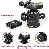 Sinvitron Qzsd-02 Aluminum Tripod Ball Head Ballhead + Quick Release Plate Pro Camera Tripod, Max Load to 15kg