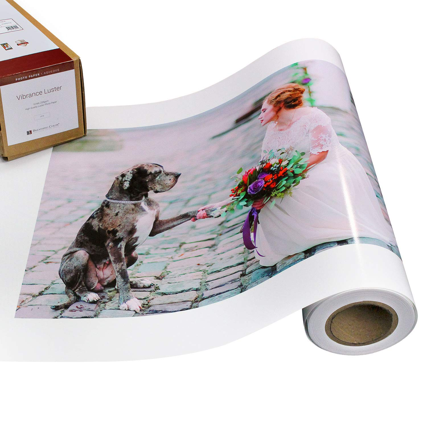 Vibrance Luster Photo Printer Paper 10 mil 255 gsm Luster Finish Premium Photo Paper Roll on 3in Core 24 inches x 100 feet Works with Most Inkjet Printers Including Professional Makes and Models by Breathing Color