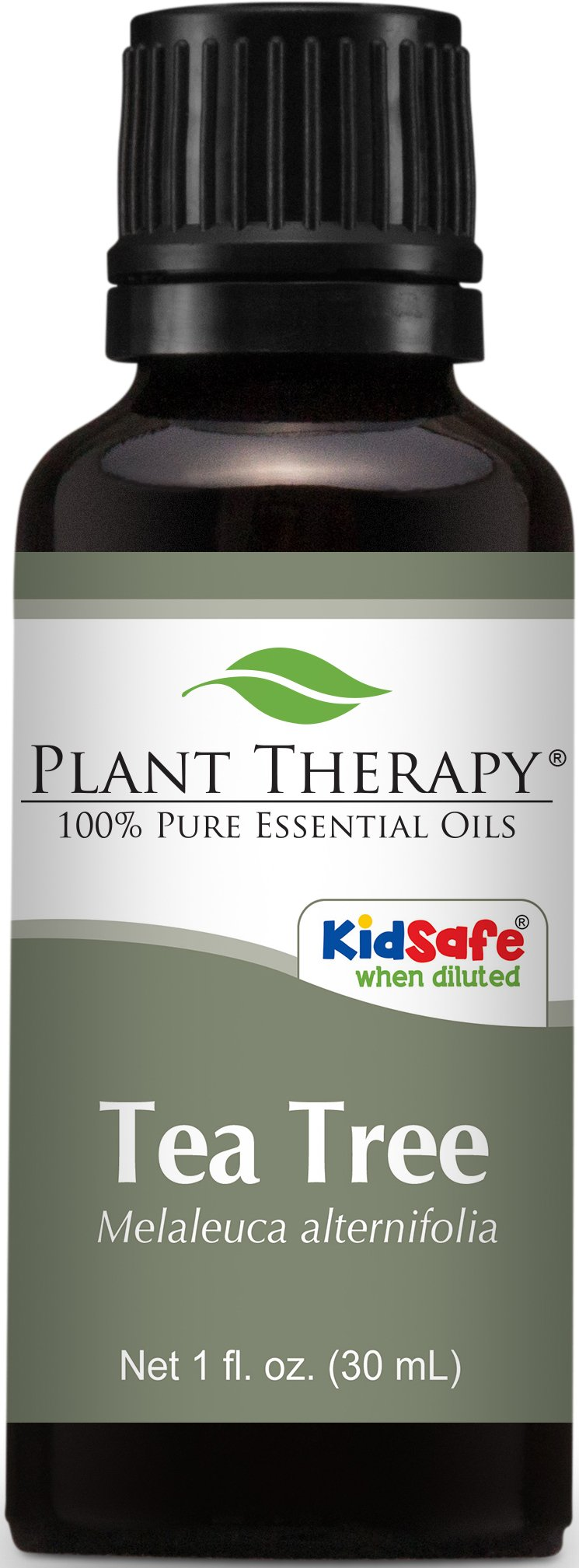 Plant Therapy Tea Tree (Melaleuca) Essential Oil. 100% Pure, Undiluted, Therapeutic Grade. 30 ml (1 oz).