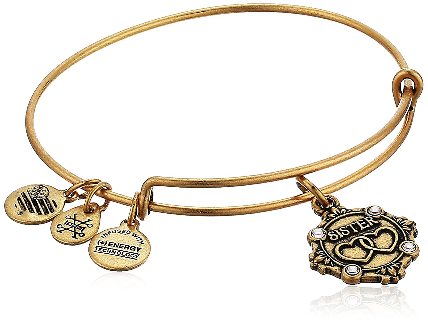 Alex and Ani Womens Because I Love You Sister III Bangle Sister Charm Bangle Bracelet Rafaelian Gold Expandable A18BILY10RG