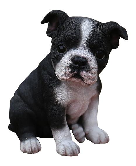 Hi Line Gift Ltd. Sitting Boston Terrier Puppy Statue