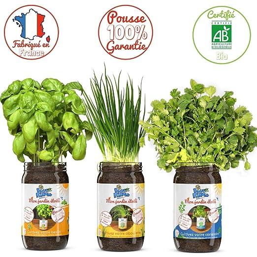 Blue Farmers | Hierbas aromáticas para crecer | Garantía de ...