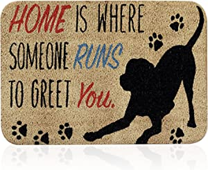 Funny Welcome Mats, Home is Where Someone Runs to Greet You Doormat for Front Door Outdoor, Ultra Soft Non-Slip Thin Floor Mat. (Style 10)