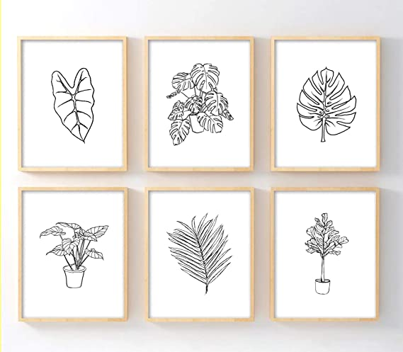 Amazon Com Ink Inc Botanical Prints Tropical Plants And Leaves Line Drawings Wall Art Minimal Black And White Home Decor Set Of 6 8x10 Matte Unframed Posters Prints Posted in stock image » illustrations. ink inc botanical prints tropical plants and leaves line drawings wall art minimal black and white home decor set of 6 8x10 matte unframed