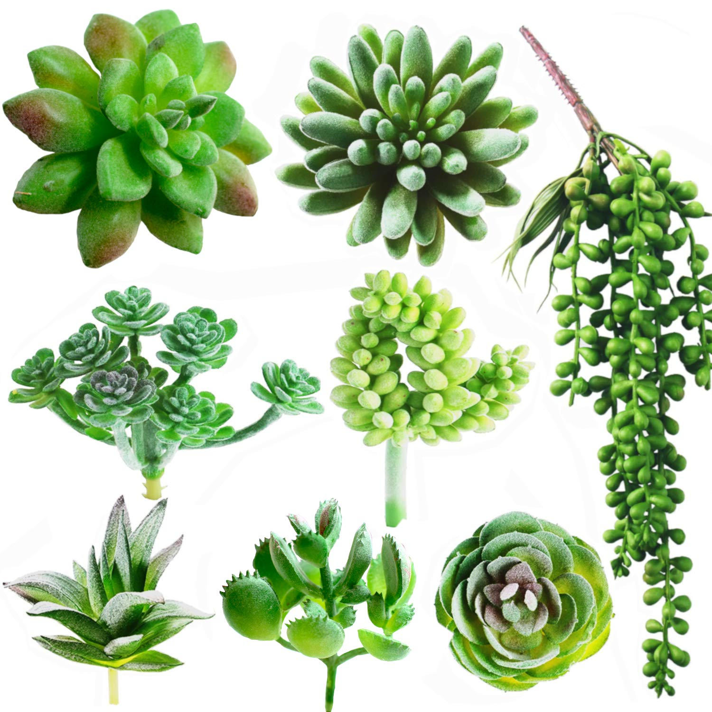 Amazon Com Dandevo 8 Pcs Unpotted Fake Succulent Plants Assorted