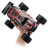 Traxxas E-Revo VXL: 1/16-Scale 4WD Racing Monster