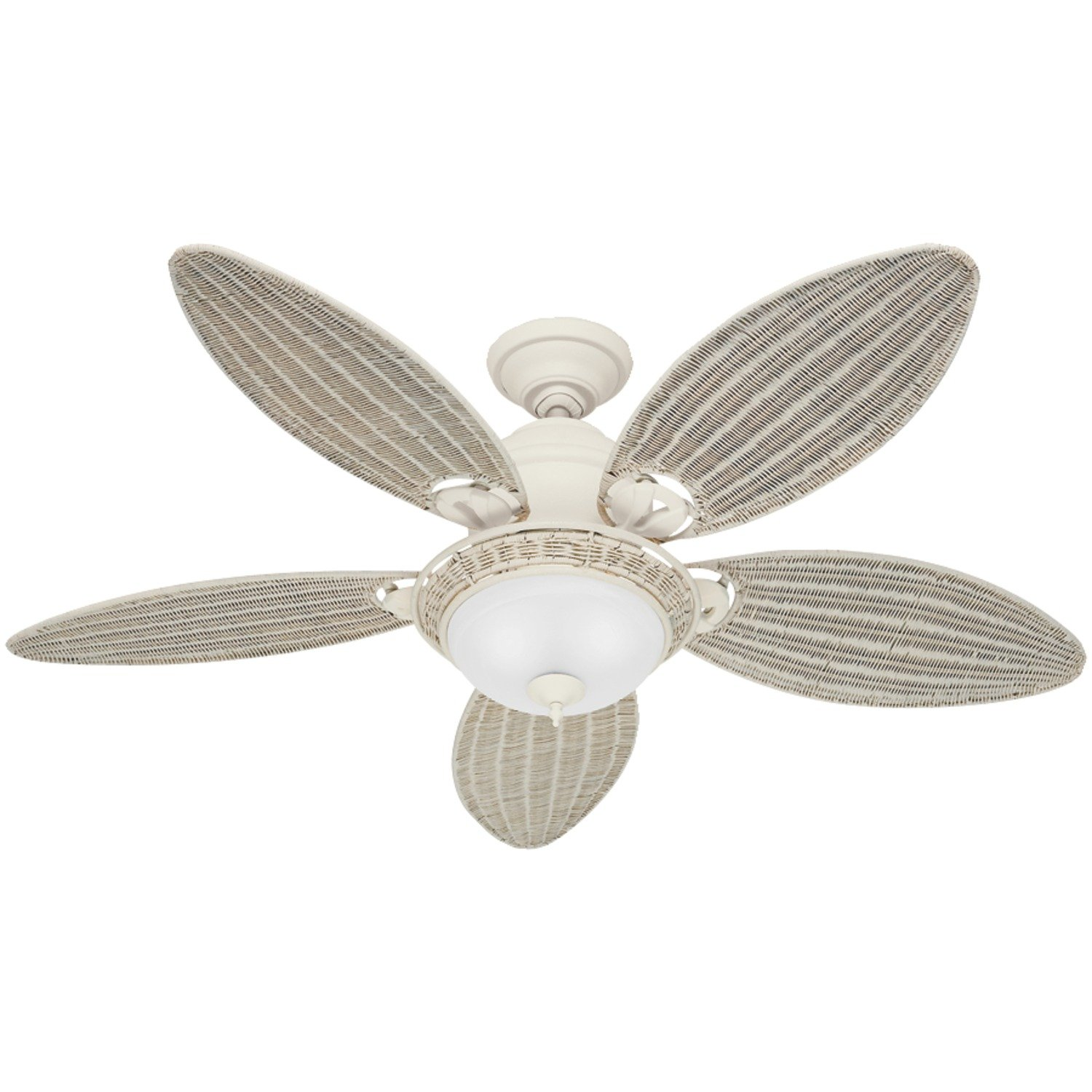 Hunter Fan pany Caribbean Breeze 54 Inch Textured Ceiling
