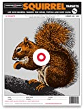 Life Size Squirrel - Paper Hunting Shooting Targets 9x12 Inch
