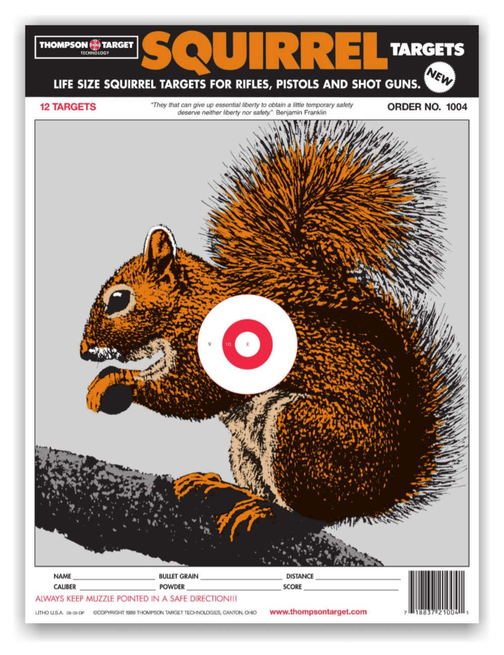 graphic regarding Squirrel Target Printable named Existence Measurement Squirrel - Paper Searching Capturing Ambitions 9x12 Inch