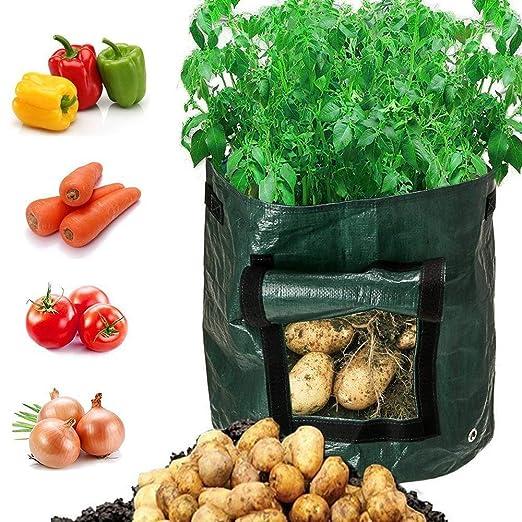 Huston Lowell Bolsas de Cultivo para Verduras y Patatas, con ...