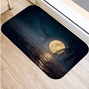 KFEKDT Sea Moon 3D Floor Mat Fleece Absorbent Carpet Non-Slip Bathroom Kitchen Carpet Mat Entrance Indoor Door Mat No-4 40cmx60cm