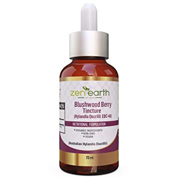Amazon com: Blushwood Berry Tincture 70 ml - 10:1 Concentrate - 10X