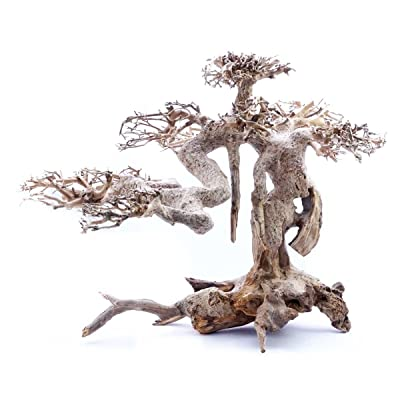Superfish 60392/3884 Wood Bonsai Driftwood (Large): Pet Supplies