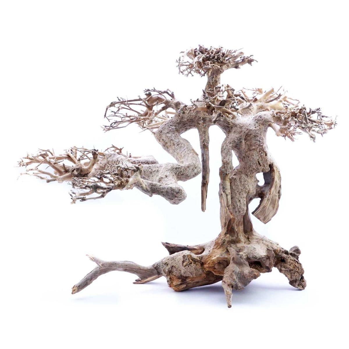 spedizione veloce in tutto il mondo Superfish naturale legno bonsai Driftwood Driftwood Driftwood Large 30 x 20 x 25...  fino al 60% di sconto