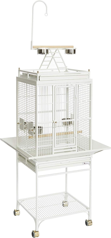 Amazon Com Avian Adventures Nina Playtop Bird Cage Birdcages Pet Supplies