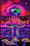 Mushroom Ripple Blacklight Poster 23 x 35in