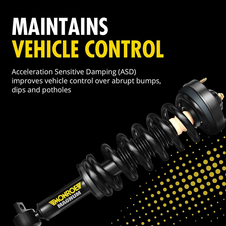 Gas-Magnum Severe Service Complete Strut Assembly