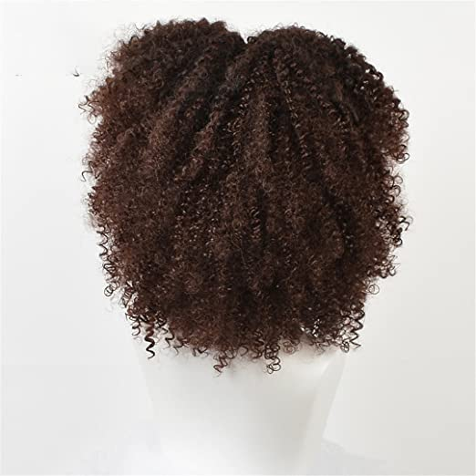 Amazon.com : Brown Synthetic Curly Wigs For Women 9 Colors Short Afro Wig African American al 14 Inches Black Hair as picture1 14inches : Beauty